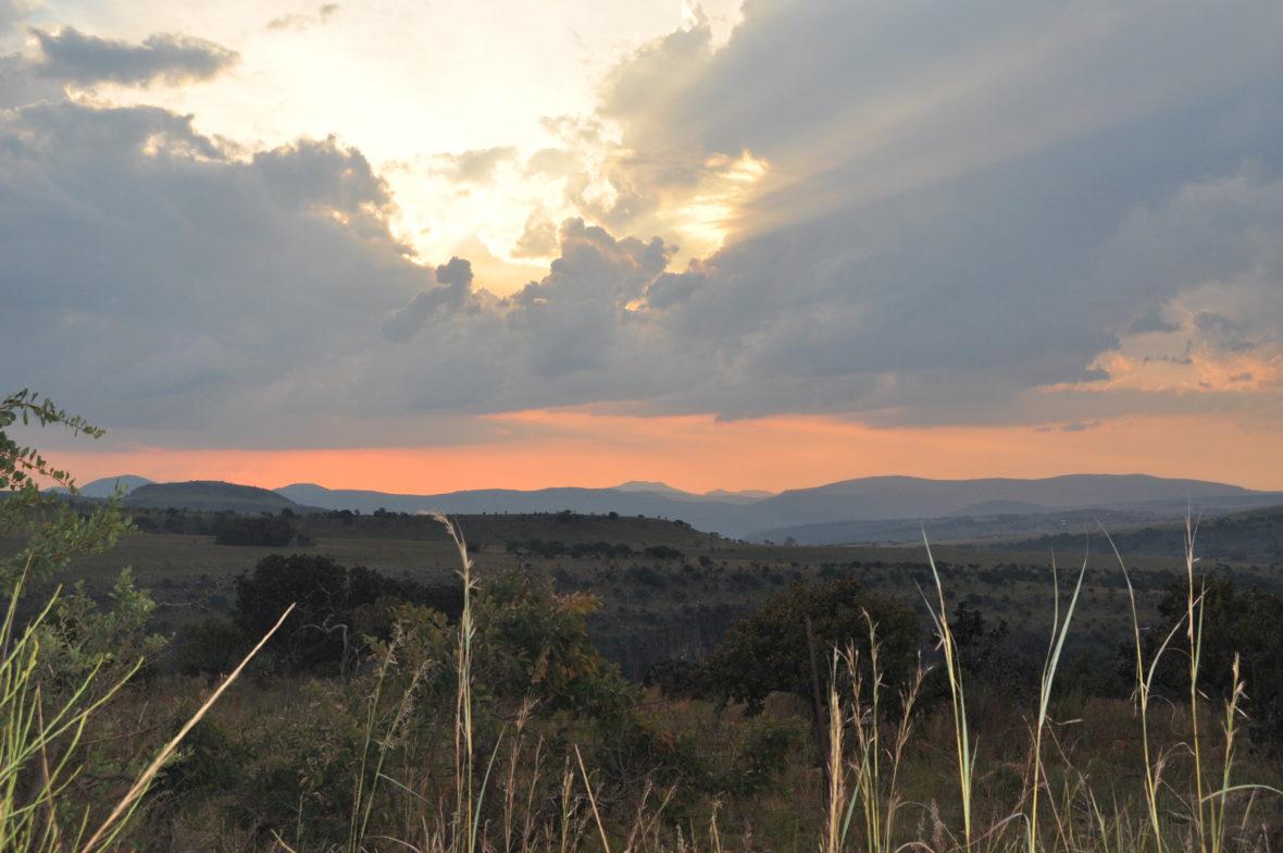 paysage afrique du sud